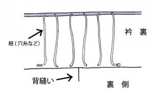 背の紐(穴糸など)
